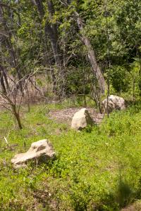 Row of Rocks